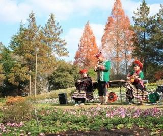 【花の文化園】秋のフラワーコンサート