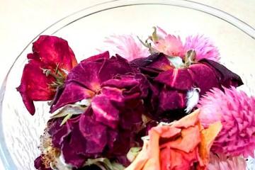 【花の文化園】バラの香りを楽しめるワークショップ