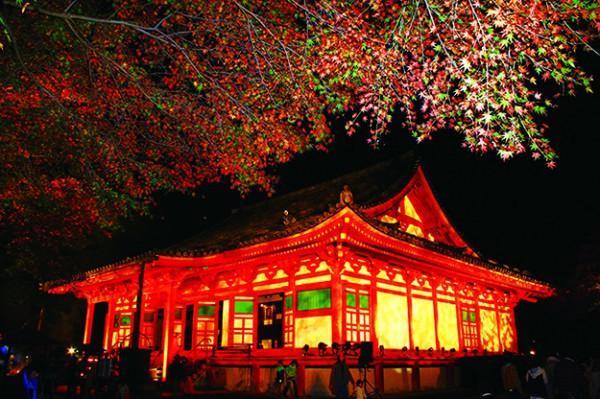 観心寺ライトアップ