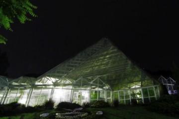 夜温室-600x359