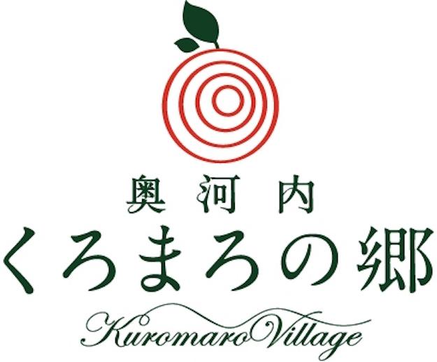 kyo_v10_09_d