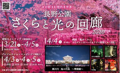 me_sakura