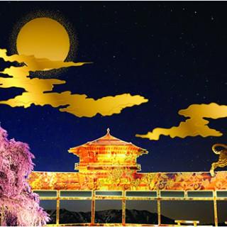 長野公園 さくらと光の回廊