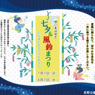 vol21_tanabata
